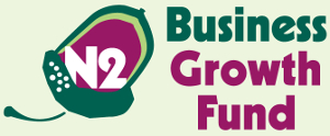 N2 Business Growth Fund